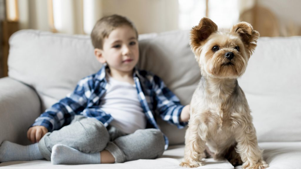 perro con nió en casa