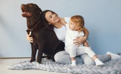 Consejos para tener mascotas en tu comunidad de vecinos